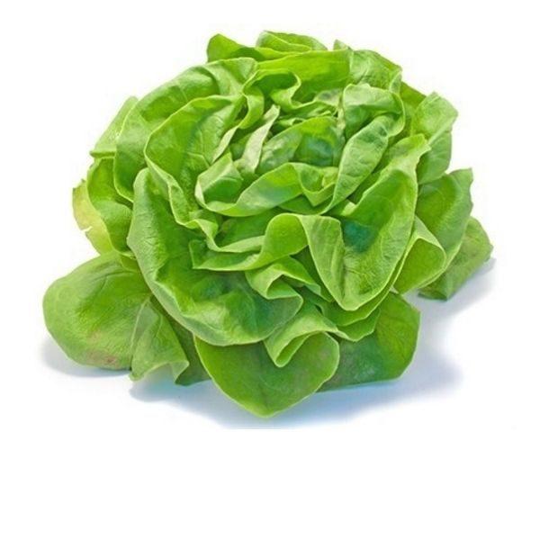 Salade boston