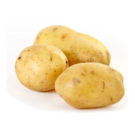 Patate blanche